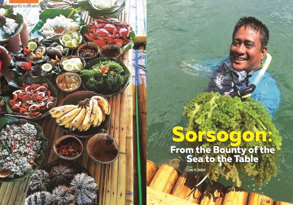 Food Holidays Philippines Sorsogon From sea to table