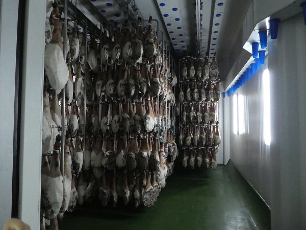 hams in the long curing process