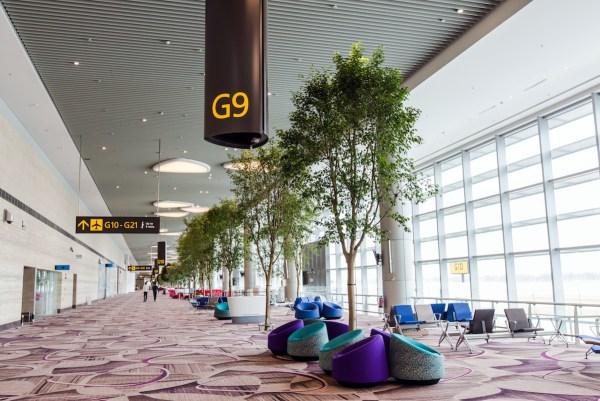 T4 boarding corridor