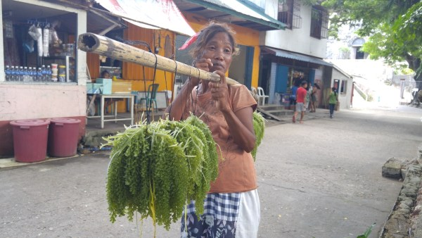 A local Seaweed vendor