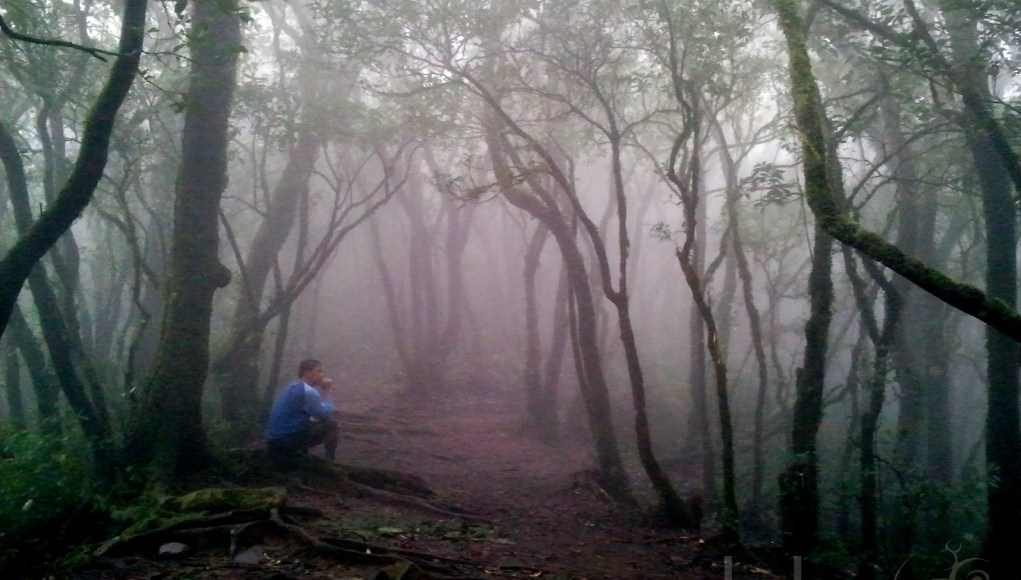 Mt. Cristobal via Yodisphere.com