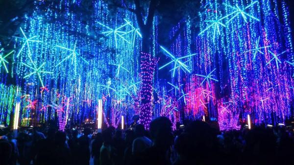 Christmas Lights at the Ayala Triangle Gardens
