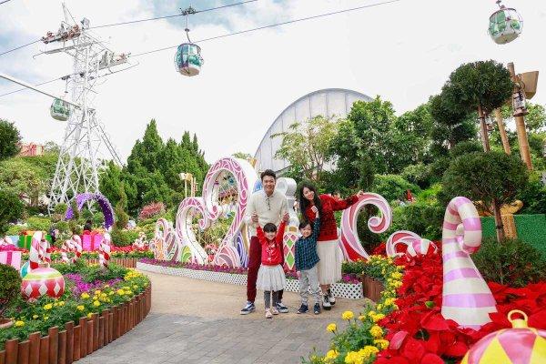 Christmas Themed Garden