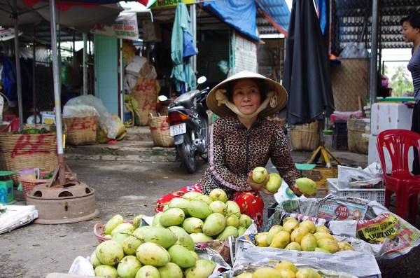 Fruit Vendor in Saigon