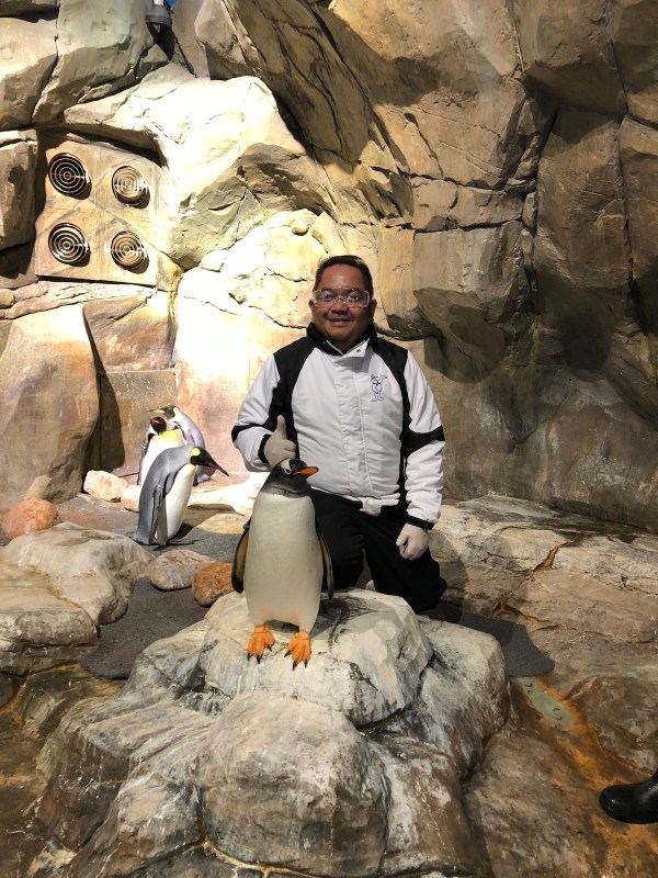 Photo Opportunity with the Penguins