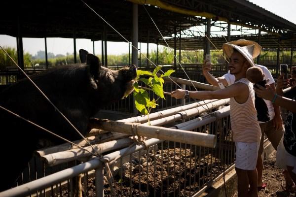 EDL Farm Tour photo by Martin San Diego NPVB