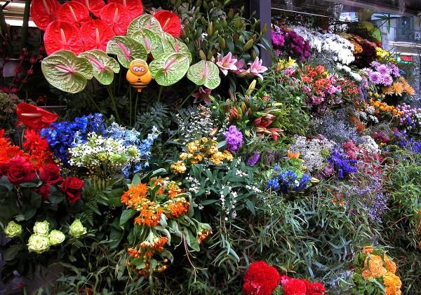Flowers for your sweet senorita.
