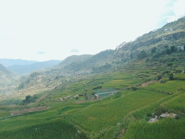 Captivating Sagada Rice terraces