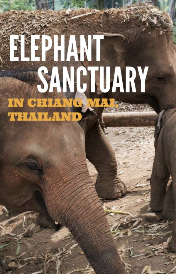Elephant Sanctuary in Chiang Mai, Thailand
