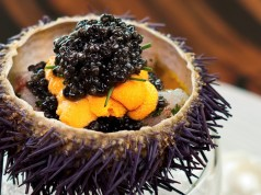 Marinated Botan Shrimp with Sea Urchin .