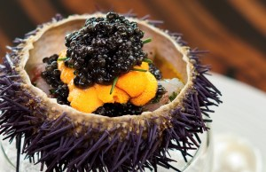Marinated Botan Shrimp with Sea Urchin .