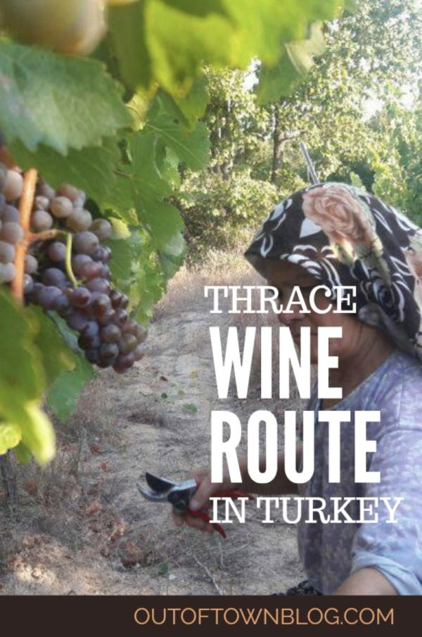 A Guide to Thrace Wine Route in Turkey