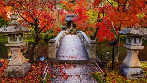Eikando Zenrinji Temple At Autumn