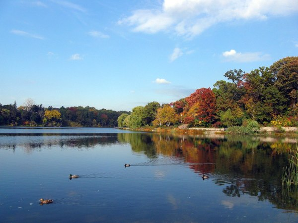 High Park by Diego Silvestre via Wikipedia CC