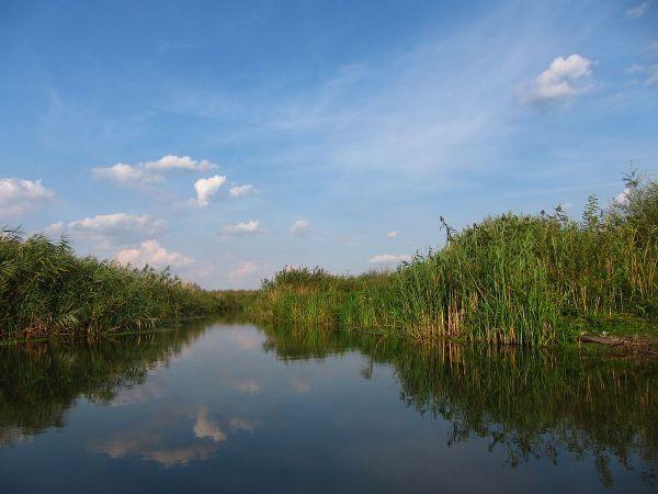 Neajlov River in Comana Natural Park by Radu Ana Maria via Wikipedia CC