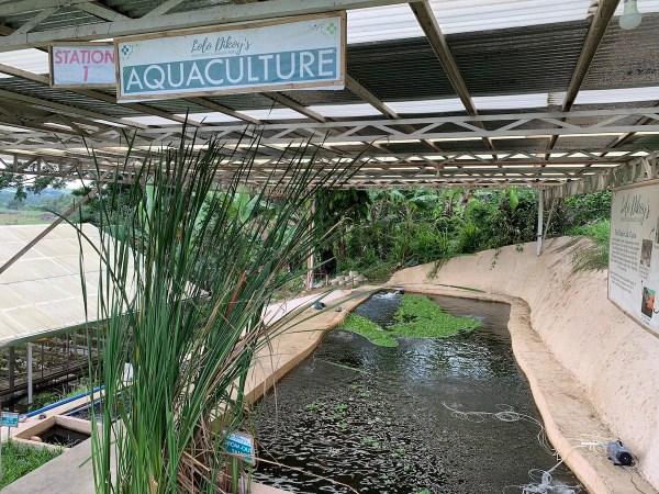 Aquaculture in Iloilo