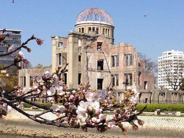 Cherry Blossoms in Hiroshima Japan