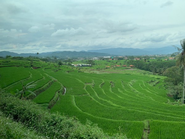 View on our way to Yogyakarta