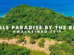 Malasimbo Music and Arts Festival 2019