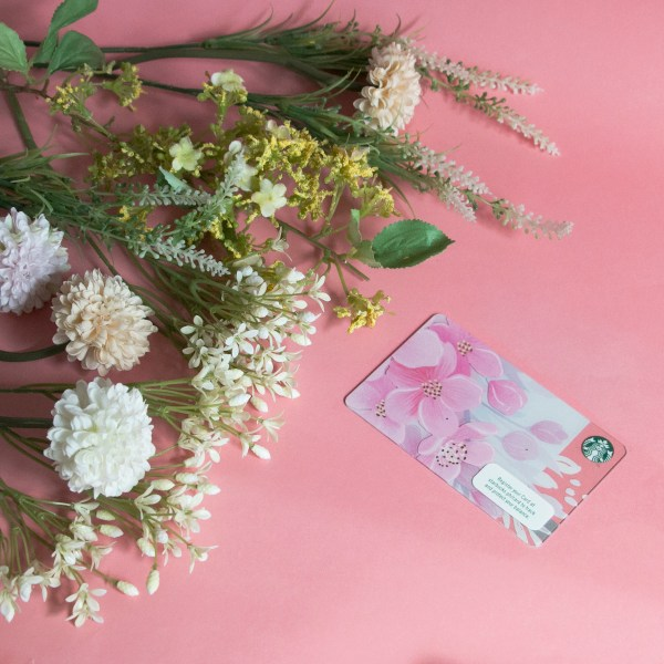 2019 Sakura Starbucks Card