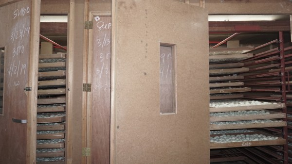A standard balut incubator