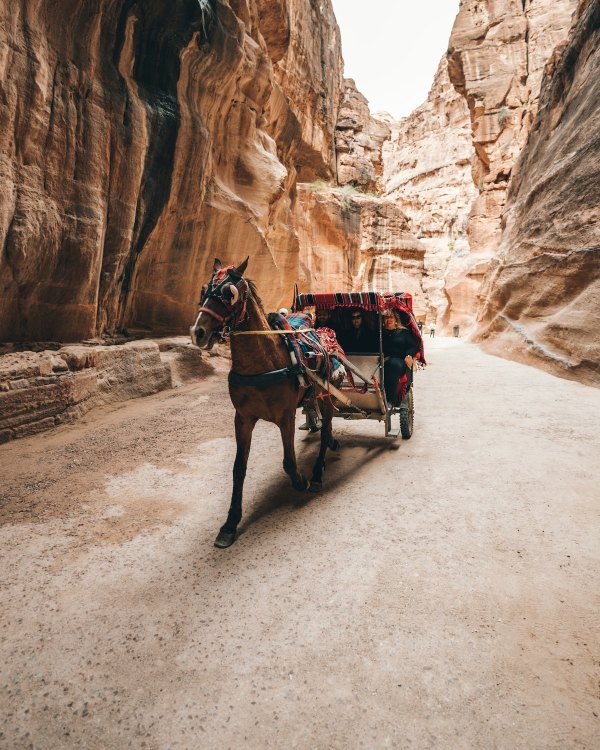 Horse carriage near canyon in Petra photo by Spencer Davis via Unsplash
