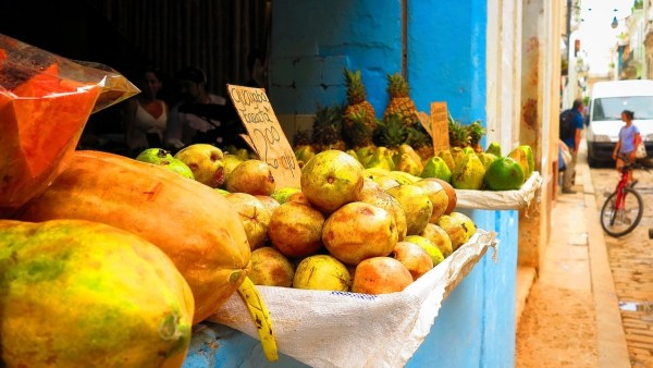 Havana Fruit Shops