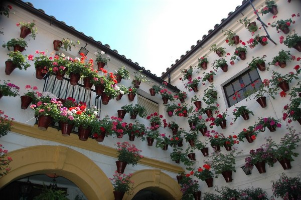 Houses in Cordoba Spain during Month of May