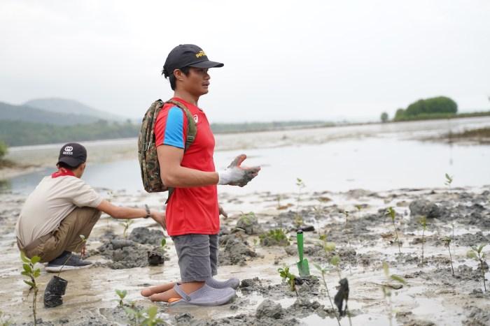 Toyota Mangrove Planting