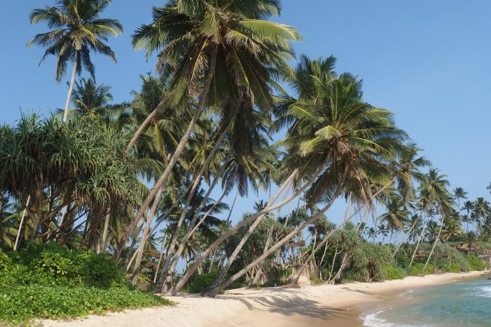 Dickwella Beach in Sri Lanka