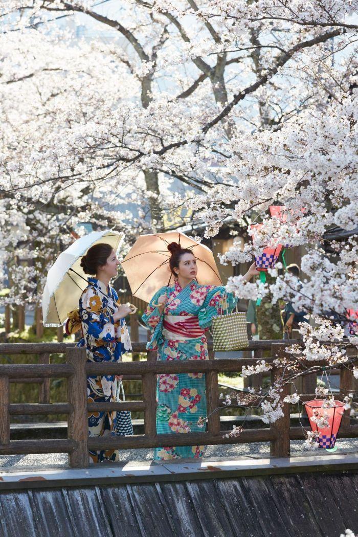 Yukata Rental with Sakura