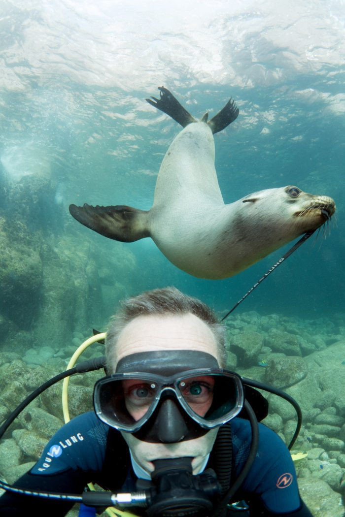 Diving in La Paz (Mexico) at the sea lion colony Photo by @pascalvendel via Unsplash