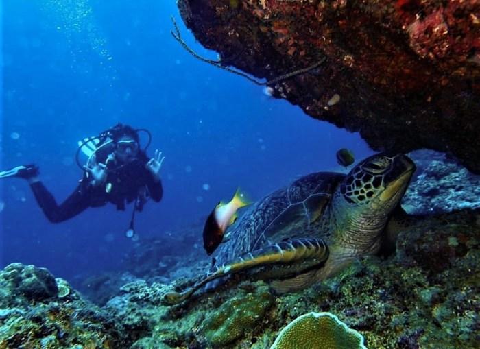 Scuba Diving in El Nido Photo by Ten Nuts