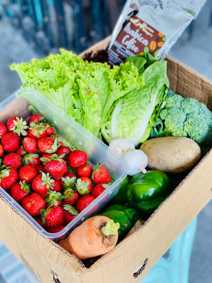 Home.fit Fresh-Fruits-and-Vegetable-Delivery-via-Session-Groceries-App Session Groceries: Fruits and Vegetables Delivered at the Comfort of your Home