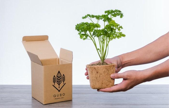 Gardening Starter Kit