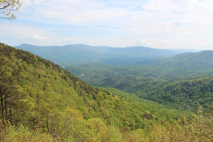 Chattahoochee-Oconee National Forests photo by Thomson200 via Wikipedia CC