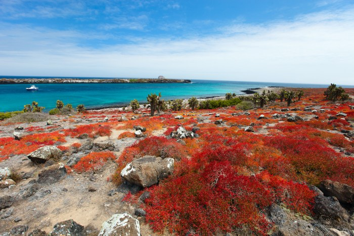 Galapagos Island photo via Depositphotos