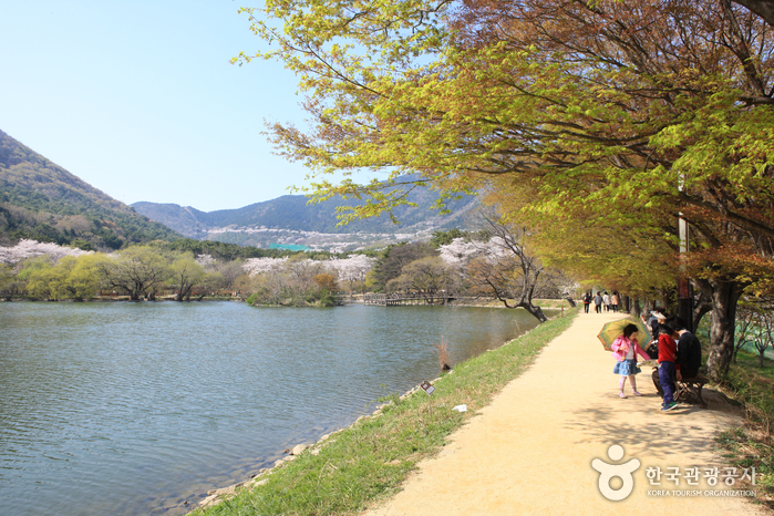 Jinhae NFRDI Environment Eco-Park photo via VisitKorea.or.kr