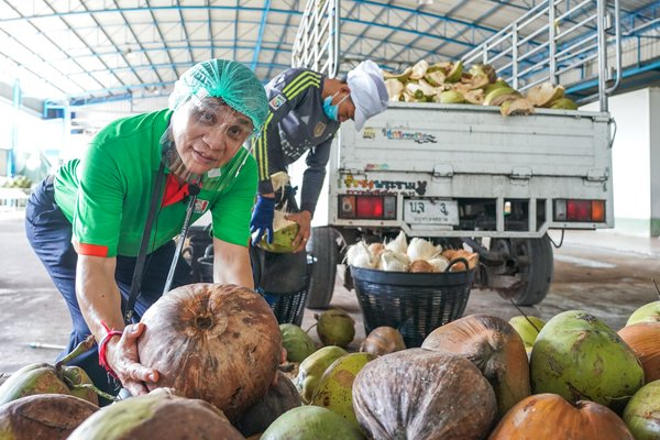 Every coconut can be traced back to its source as a part of The Traceability program.