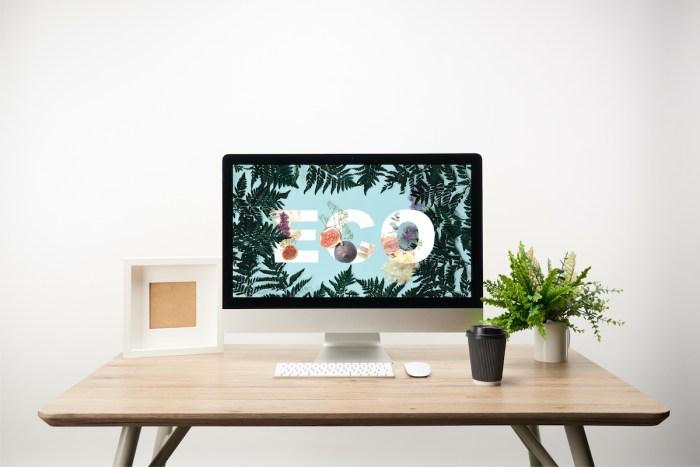 Popular Desk plants