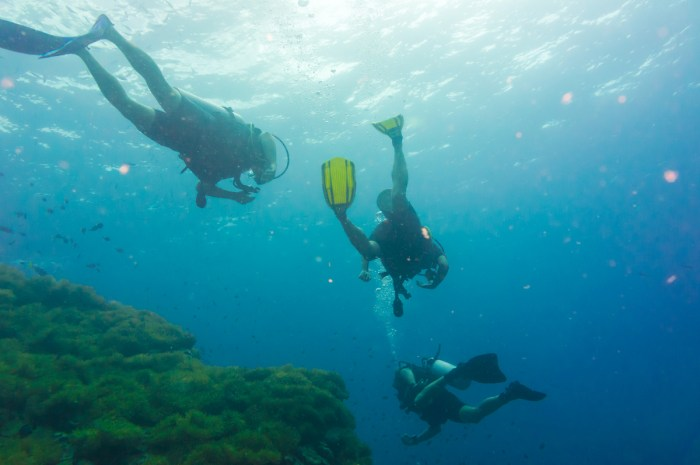 Home.fit Scuba-Diving-in-Koh-Lanta-photo-via-Depositphotos Koh Lanta Bucket List: Top 15 Best Things to Do in Koh Lanta, Thailand