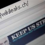 Quem tem medo do Wikileaks