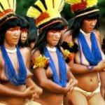 América Indígena, precursora do mundo 2.0