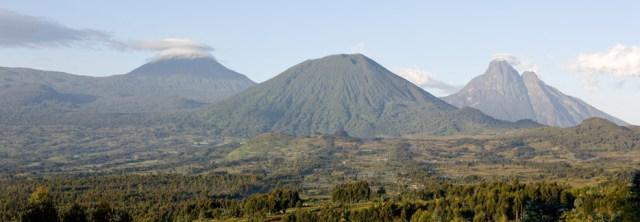 Image result for volcanoes national park rwanda