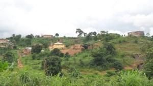 Ugbo Odogwu, Trans Ekulu Enugu