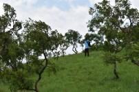 Adventure of Abiola and I (19)