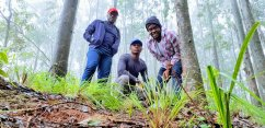 A Trip To The Beautiful Mambilla Plateau Of Taraba..