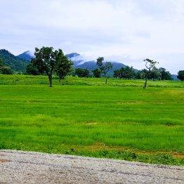 Road Trip To Taraba.