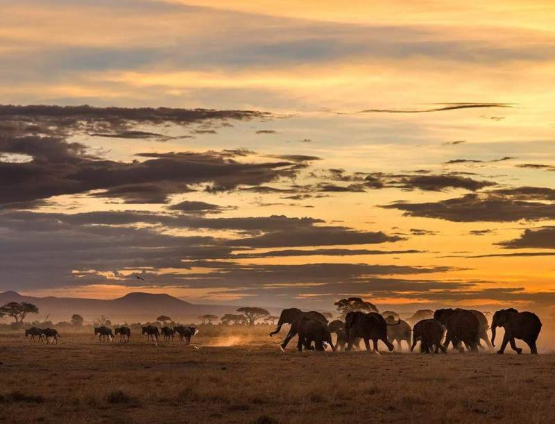 Ten Must Visit Places in Kenya