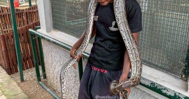 Tukur Tukur Snake Farm